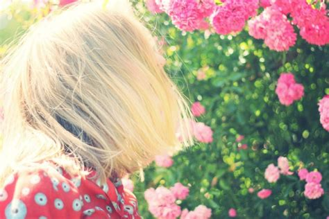 curarsi con i fiori di bach curarsi con i fiori di bach cosa sono e a cosa servono