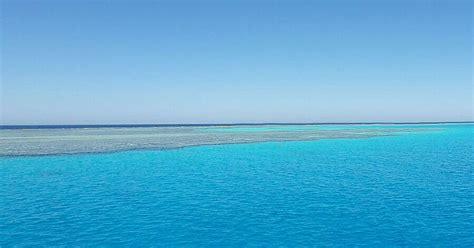 dove fare il bagno coi delfini nuotare coi delfini hurghada mar rosso snorkeling casa