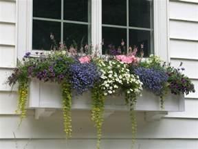 60 quot window boxes