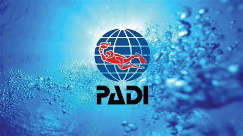 dive card padi scuba diving courses 183 aussie divers phuket