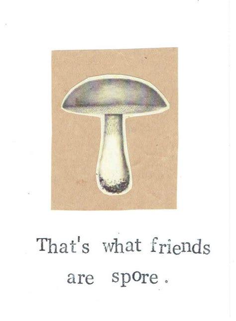 mushroom puns ideas  pinterest punny puns