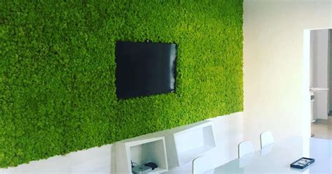 ufficio giardini roma giardini verticali per ufficio brand039