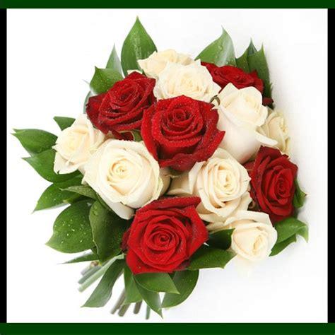 imagenes de flores rojas y blancas fotos de ramos de rosas rojas y blancas imagen de rosas