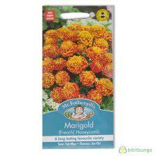 Benih Bibit Biji Bunga Begonia Summer Rainbow F2 Seeds Import benih paria dulco f1 7 biji panah merah bibitbunga