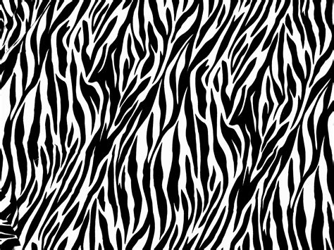 zebra print designs winter digital camo vs zebra rims paint