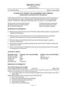 senior level resume sles senior level project manager blueprint r 233 sum 233 s consulting