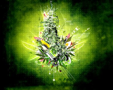 blackberry weed themes download marihuana and weed wallpapers apk for blackberry