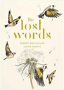 the lost words amazon co uk robert macfarlane jackie morris 9780241253588 books