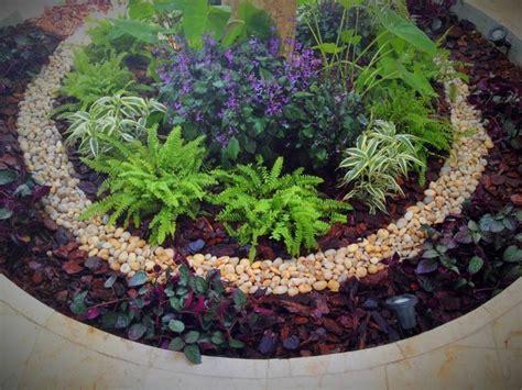 imagenes jardines pequeños modernos m 225 s de 1000 ideas sobre plantadores de 193 rboles en