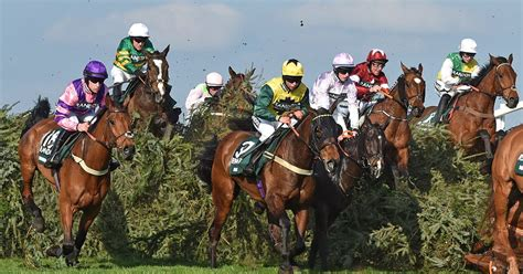 grand national   sweepstake kit cheshire