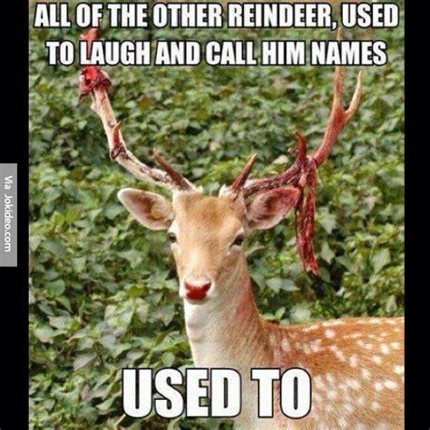 Funny Deer Memes - funny reindeer meme