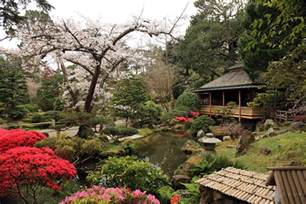 japanese tea garden co curricular tickets sat sep 24