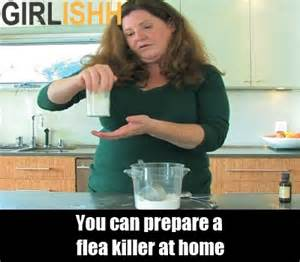easy home remedies for killing fleas ways for