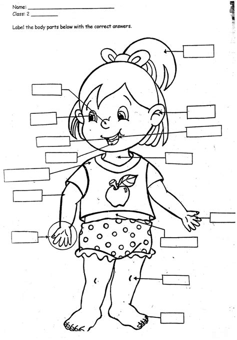 Grade 4 Coloring Pages by 4th Grade Coloring Pages 4th Grade Coloring Pages
