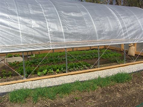 hoop house how to make a hoop house or green house for cheap united truth seekers