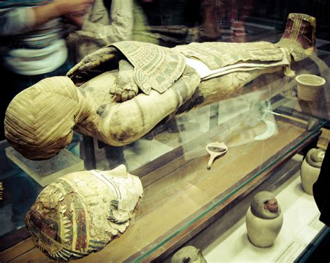 by mummy egyptian mummy