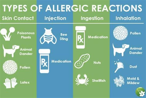 house allergies germ allergy free cleaning system squeaky clean house cleaning services