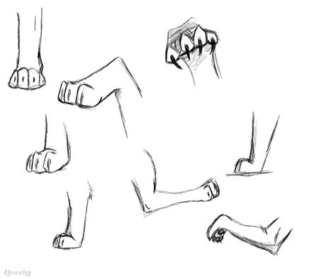 how to draw a paw paw practice jpg an animals speedpaint drawing by kibathefurry queeky draw paint