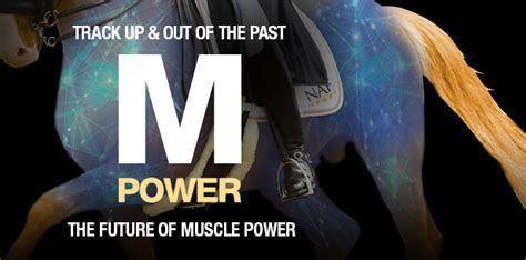 m power supplements m power equine supplements supplements for horses naf