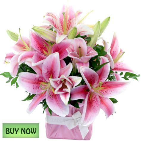 order flowers flowers january gold coast australia botanique