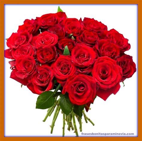imagenes bonitas rosas rojas imagenes bonitas de rosas y flores frases bonitas para