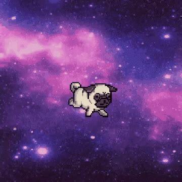 pug running gif pug run gif pug run running discover gifs