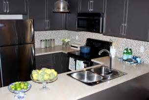 Condo Kitchen Design Ideas Pin By Stephanie Tran On Home Remodel Pinterest