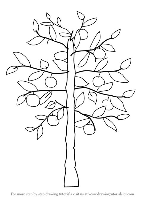 how to draw a doodle tree learn how to draw an apple tree trees step by step