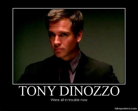 Tony Meme - tony dinozzo by loveedelric on deviantart