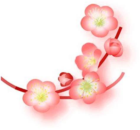 fiori di pesco disegni fiori di pesco clipart clipground