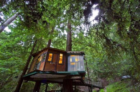 santa cruz tree house tiny treehouse cabin in the redwoods