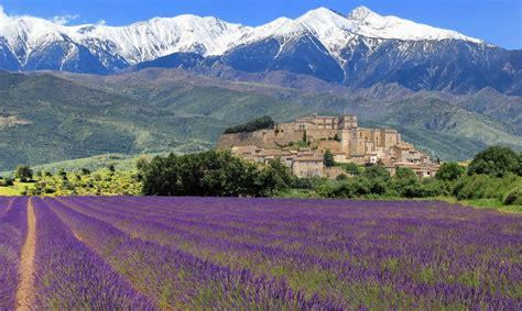 best provence day wine tour in provence winerist winerist