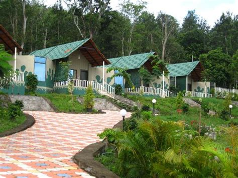 Coorg Resorts And Cottages by Honeymoon Cottages Row Picture Of Coorg Jungle C