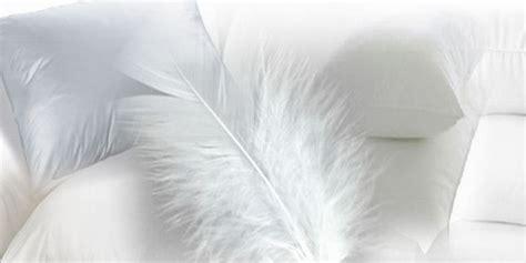 almohada de pluma almohadas de pluma la casa de las almohadas salamanca
