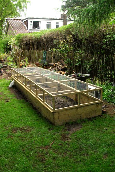 Asparagus Bed by