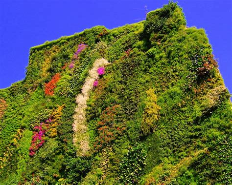 giardino verticale madrid giardino verticale madrid caixa forum 2 konrad