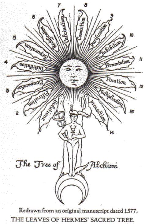 alchemy of the the sacred marriage of dionysos ariadne books the nature history of alchemy ormusmanna
