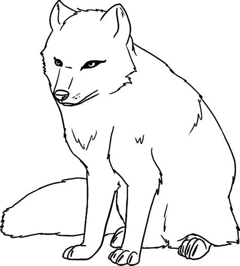 coloring page of arctic fox arctic fox easy coloring pages
