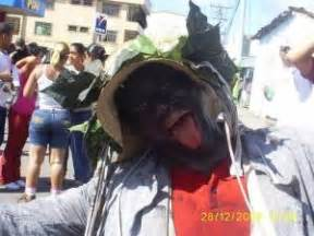 imagenes de barlovento venezuela los boleros de caucagua barlovento venezuela tuya