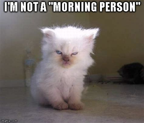 Not A Morning Person Meme - not a morning person imgflip