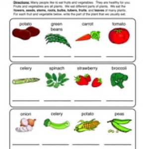 Edible parts of a plant parts of a plant worksheet 2