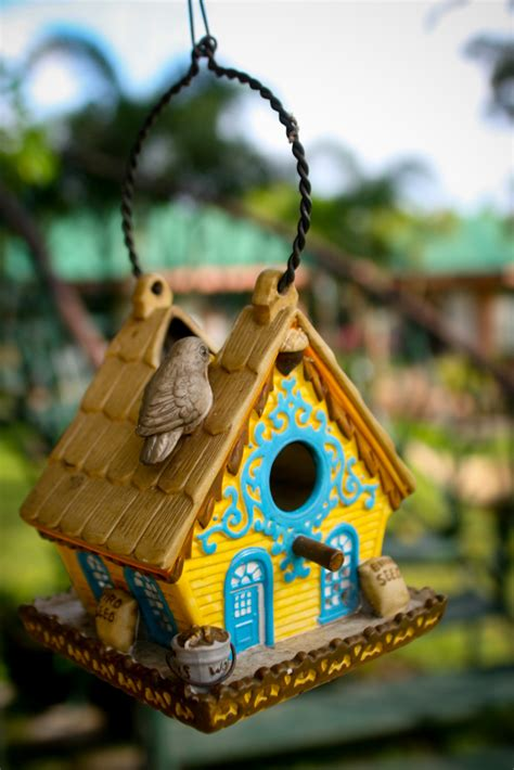 smarten   garden  stylish bird house