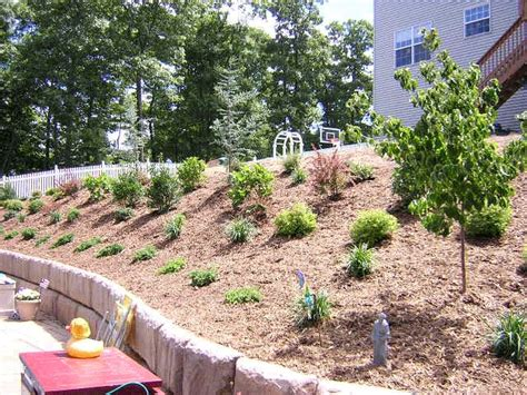 landscaping a hilly backyard image detail for how to landscape a hill that you can t