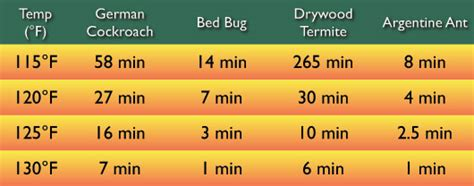 what temp kills bed bugs bed bug problem solver discreet heat remediation llc