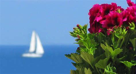 i fiori mare albenga hotels boutique hotel e alberghi di lusso