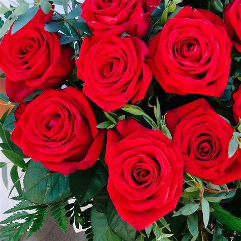 imagenes de rosas turquesas ramo de rosas rojas florister 237 a bourguignon