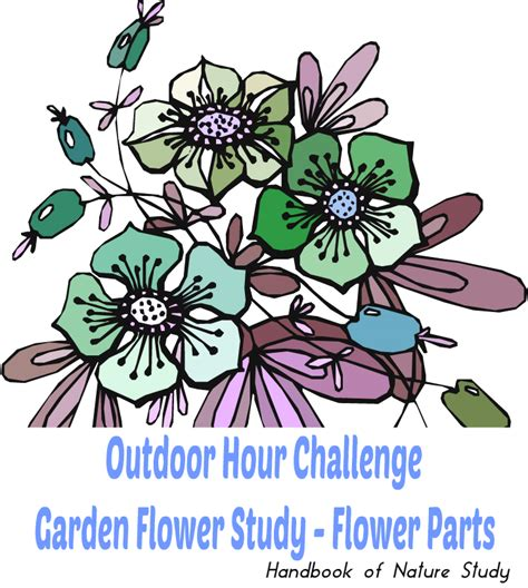 outdoor names quizfreak can you name these 13 common garden flowers j archive show 4744 aired