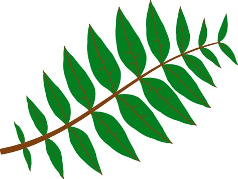 leaf clip art at clker com vector clip art online tree leaves clipart clipart suggest
