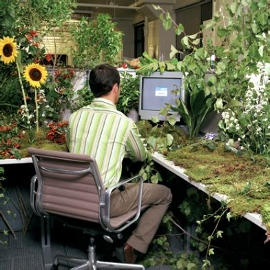 cubicle plants 20 most pimped out office cubicles gears and widgets