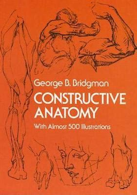 anatomy colouring book waterstones origami dinosaurs for beginners by montroll waterstones